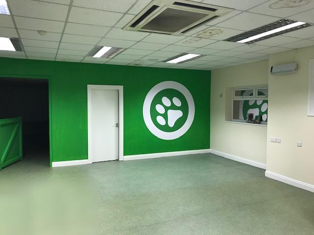 inside k9 club dog day care centre